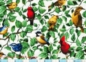 Spring Backyard Birds White 1yd 14""
