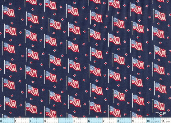 USA Flags on Navy Stars