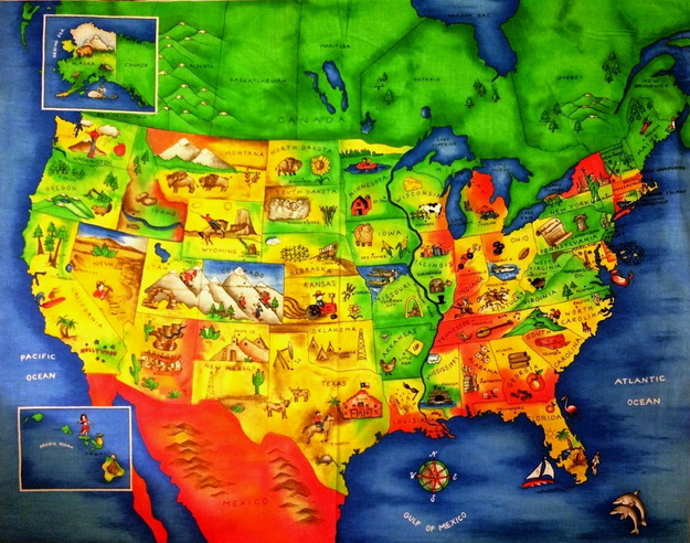 North American USA Map Wall Panel